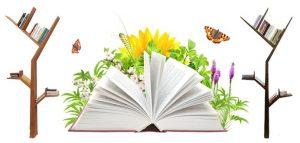 اصلاحیه ضوابط نشر کتاب
